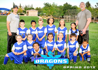DYS Blue Dragons
