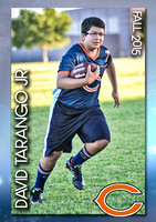 PlayerCardS1_DavidT_F15