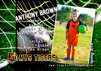 PlayerCardS2_AnthonyB_Su14