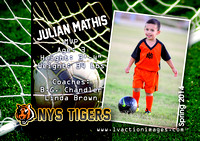 PlayerCardS2_JulianM_Su14