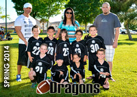 NYS Dragons S'14