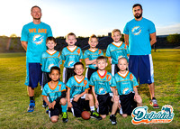 HFFL Dolphins S'15
